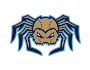 Fond du Lac Dock Spiders logo